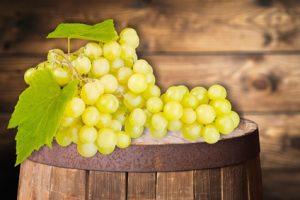 uva da cui si fa l'estratto di semi