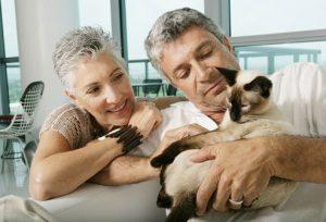 controllo sanitario del gatto
