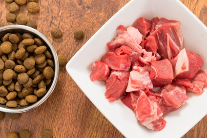 Dieta sana per animali