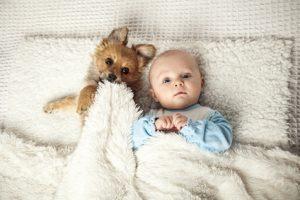 cane a letto con un neonato