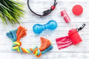 giochi e prodotti per cani e gatti di plastica