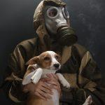 Inquinamento: Segnali d'Allarme per la Salute di Cane e Gatto