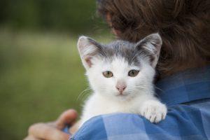 gatto in braccio ad uomo con espressione malinconica