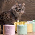 Come Fermare la Diarrea di Cane e Gatto Naturalmente