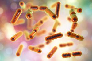 Bacilli pericolosi