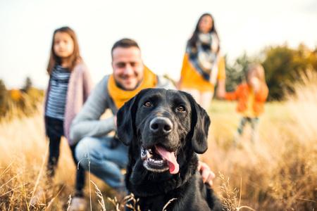 Un cane circondato da persone