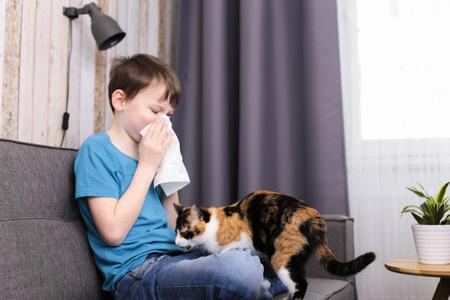 bambino si soffia il naso perchè allergico al gatto