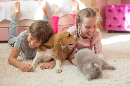 bambini che giocano con un cane e un gatto