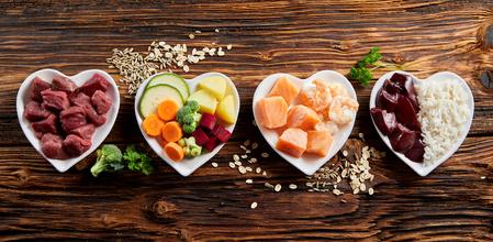 alimenti sani per animali domestici