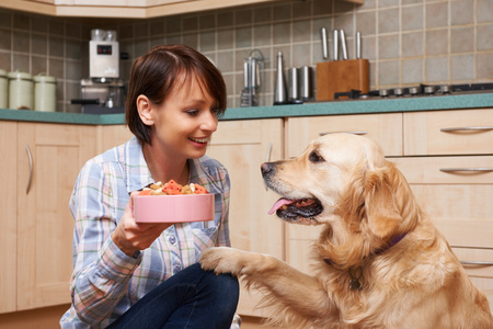 Cibi biologici per cani