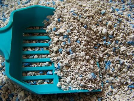 sabbia antiagglomerante per gatti