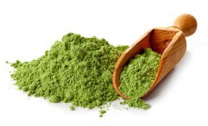 barley grass in powder
