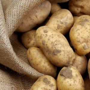 patate amido resistenti