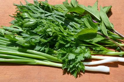 verdure a foglie verdi ricche di magnesio