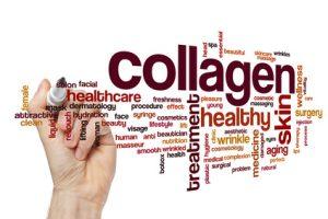 collagene, la proteina più abbondante nel corpo