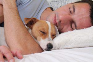 collagene aiuta il sonno