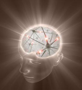 il movimento migliora la memoria