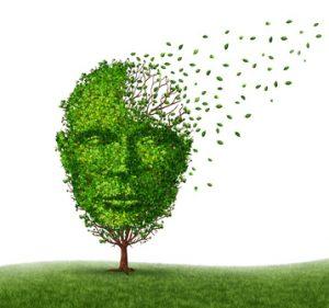 cervello che perde la memoria e capacità cognitive
