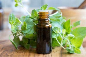 olio di origano rimedio naturale contro candida