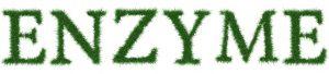 enzimi digestivi e sistemici