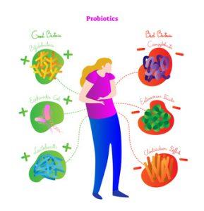 probiotici, i batteri buoni
